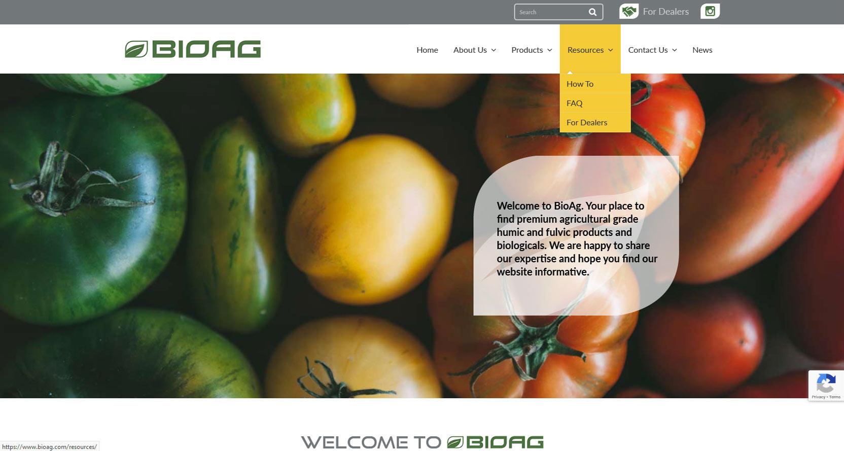 Rogue EasyWeb Web Design Case Study: BioAg