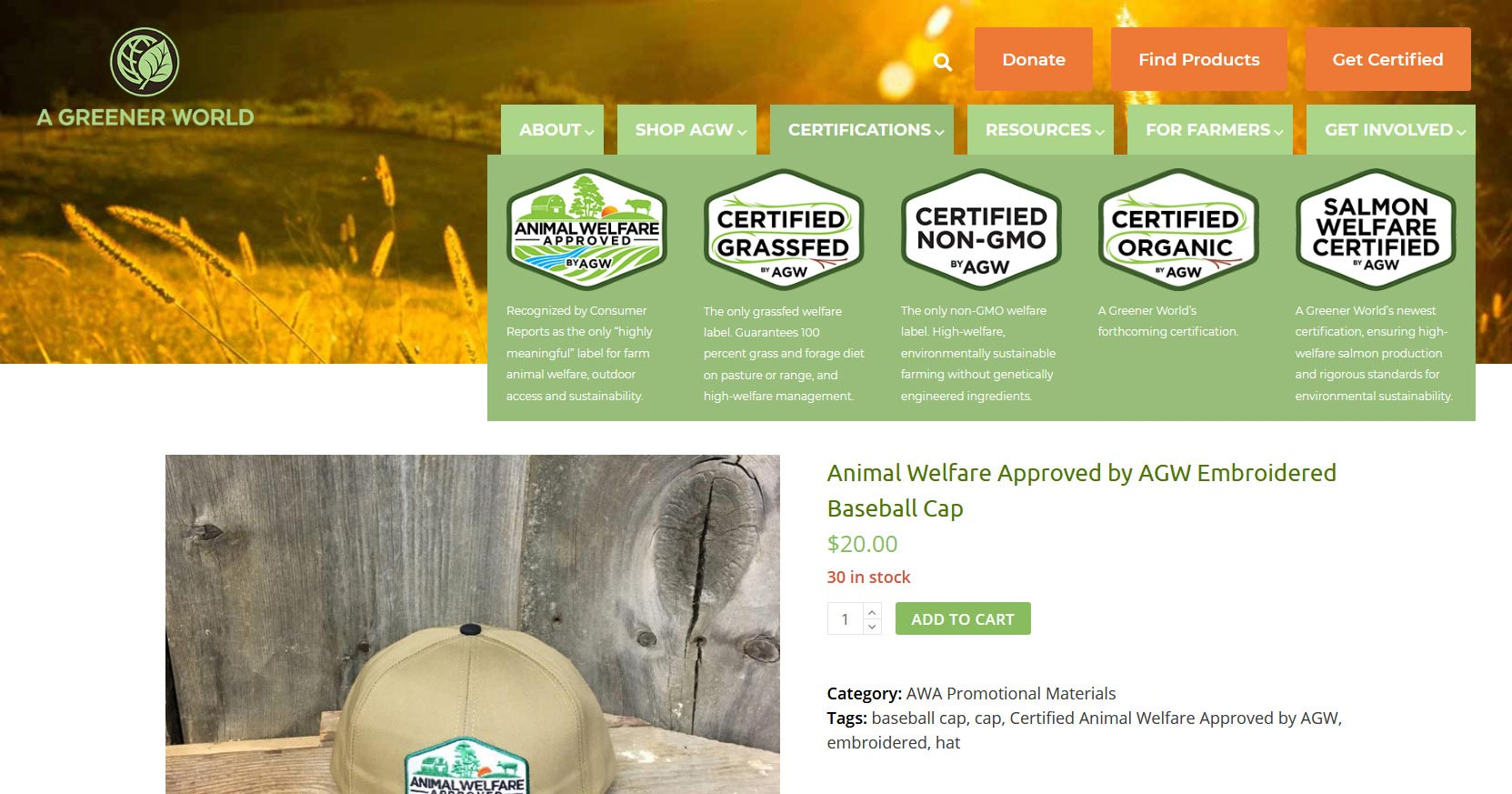 Rogue Easy Web Case Study A Greener World